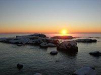 Sealrocks1_1